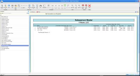 Salesperson Master Report